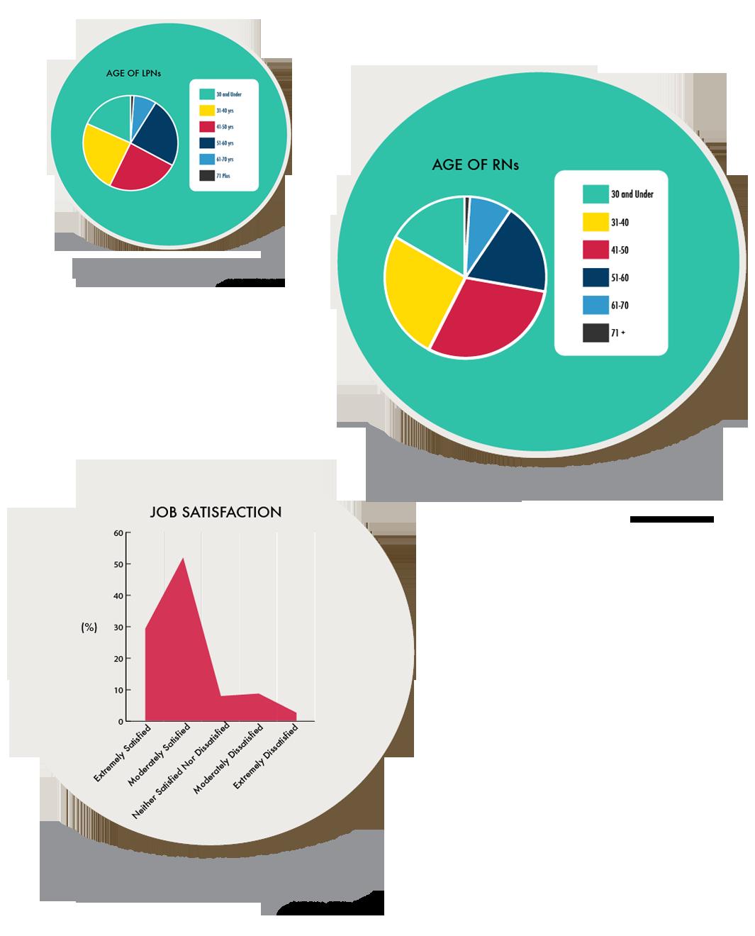 Nursing Statistics In The Us Minority Nurse